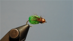 LaFontaine Deep Sparkle Pupa, Brown/Green