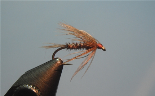 Soft Hackle, Pheasant Tail